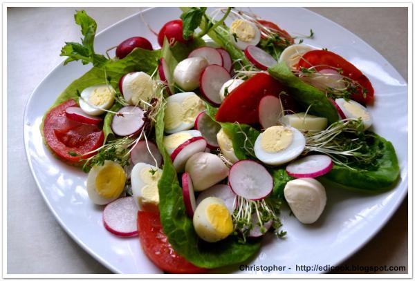 Przepis Na Salatka Z Jajkami Przepiorczymi Mniammniam Com